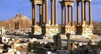 Красавица Пальмира